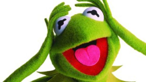 Newly Discovered Frog Species Is Kermit's Look Alike. See Striking Resemblance