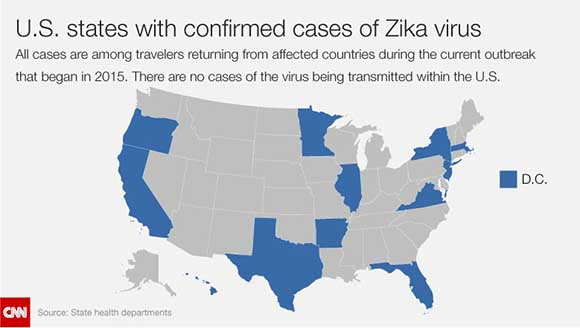 Zika Virus And Birth Defects 10 Facts You Need To Know Page 10